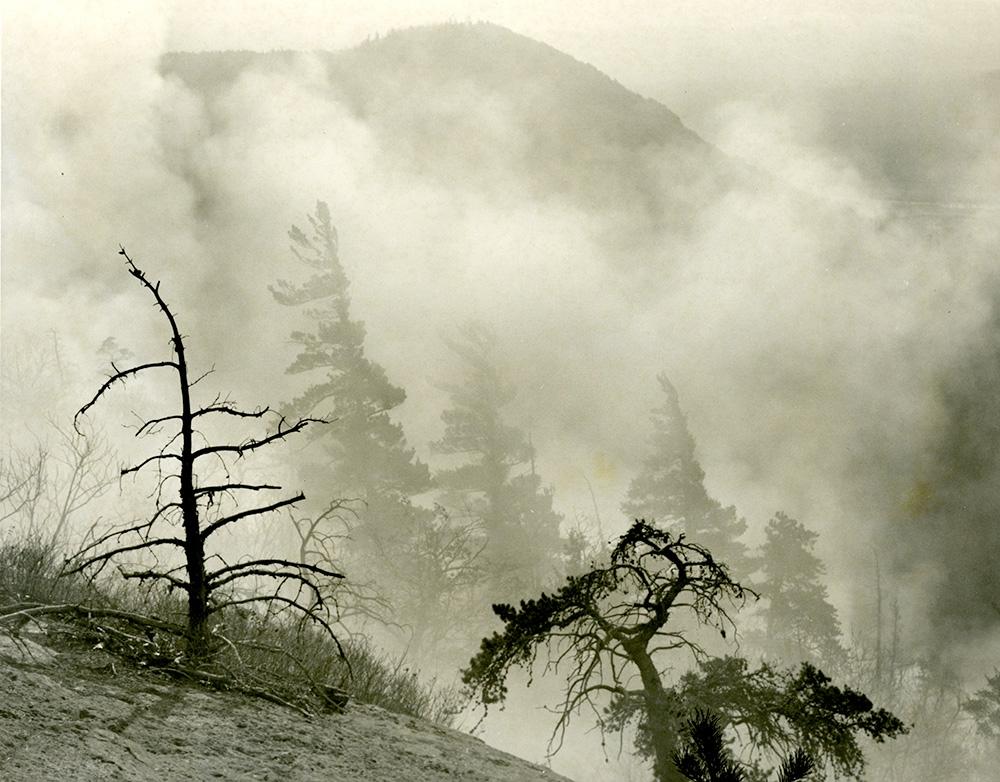 Bassett Mt. Fire