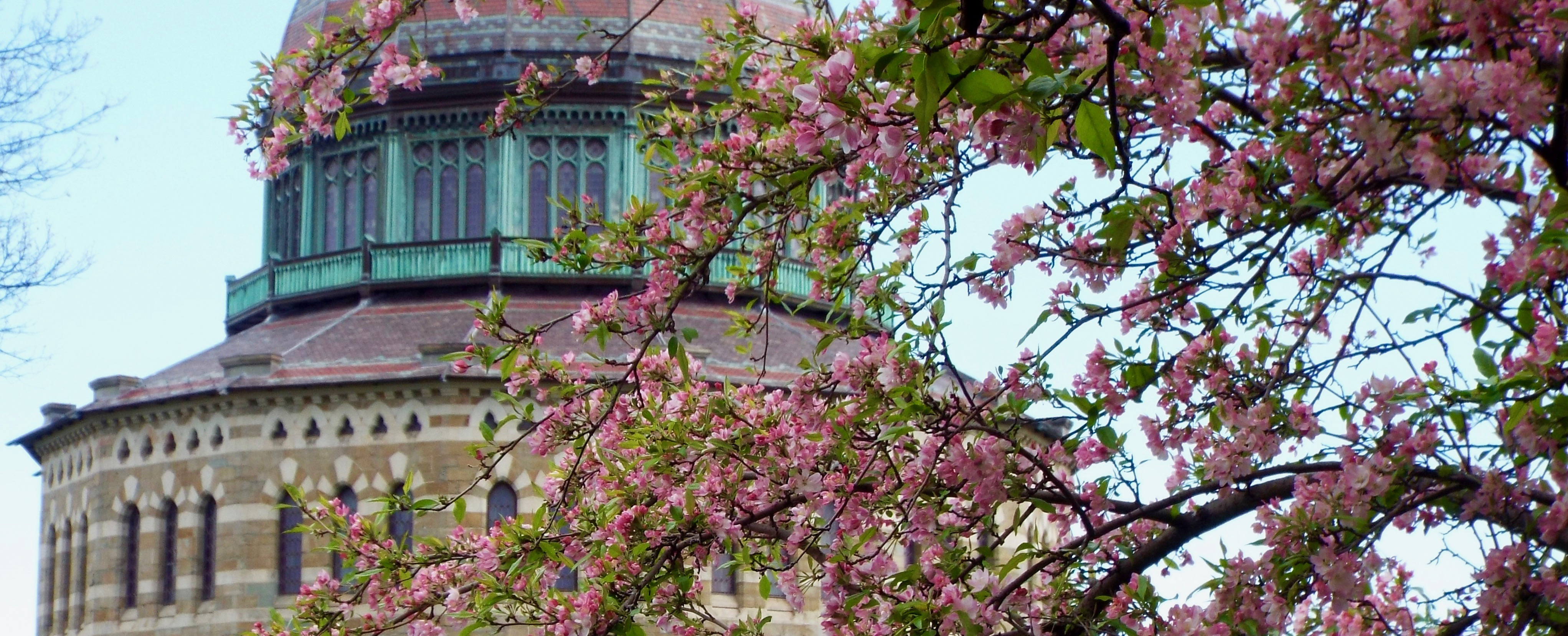 The Nott Memorial in spring