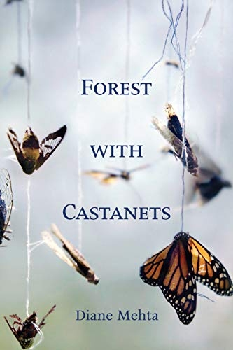 Book Cover for Forest with Castanets