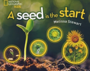 "Book cover of ""A Seed is the Start"" by Melissa Stewart '90"