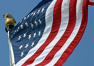 Close up of the U.S. flag on the Union Campus.