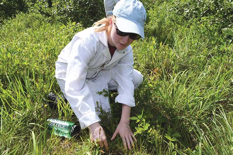 Jessica Gilbert '18 doing fieldwork